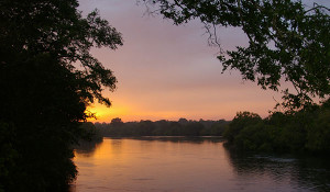 http://victoriafalls24.com/blog/2013/09/05/kafue-river-threatened-by-degradation-and-loss-of-biodiversity/